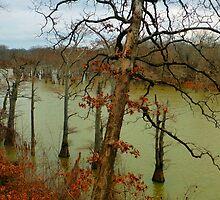 White River In Winter by WildestArt