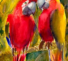 grumpy old birds by umasharda