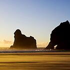 Wharariki Sunset by Robyn Carter