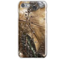 More beauty in nature iPhone Case/Skin
