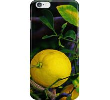 Winter Lemons iPhone Case/Skin