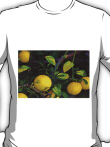Winter Lemons T-Shirt