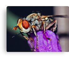 Fly Drops ! Canvas Print
