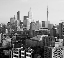 Toronto City Skyline by bluekrypton