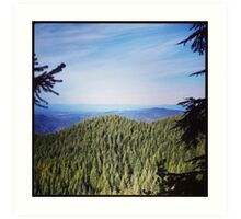 Washington Hills Art Print