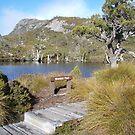 Wombat Pool .. Tasmania by gaylene