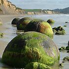 Moeraki Boulders by Amber Henry