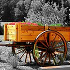 *Flower Wagon* by Darlene Lankford Honeycutt