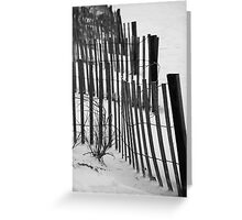 Sea Grass And Fencing Greeting Card