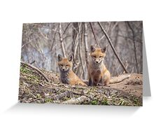 Kit Foxes 2011-1 Greeting Card