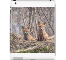 Kit Foxes 2011-1 iPad Case/Skin
