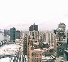 Snow - Above the Rooftops of New York City by Vivienne Gucwa