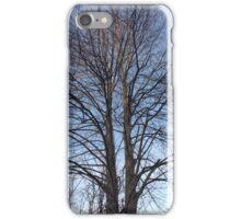 Winter tree iPhone Case/Skin