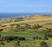 Green Fields Of  France  by aidan  moran