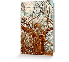 Almost Leaf Less Greeting Card