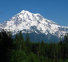 Mount Rainier by fortuitous