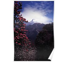 Machapuchre (Fishtail Mountain) | Nepal Poster