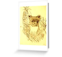 PINE MARTIN Greeting Card
