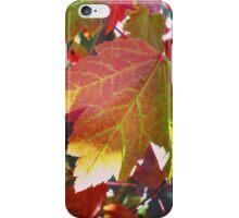 red leaf iPhone Case/Skin