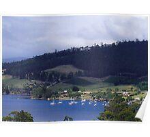 Cygnet in Tasmania Poster