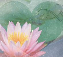Lotus Heart by Emma  Wertheim