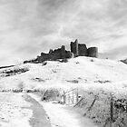 Castle Carreg Cennen by Mark Jones