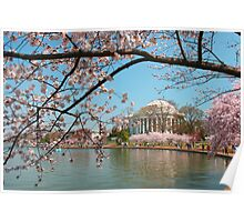 Jefferson Memorial Washington DC  Poster