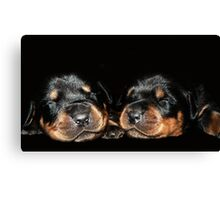 Sleeping Love Canvas Print