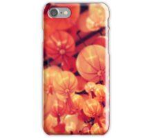 Mid-Autumn Festival iPhone Case/Skin