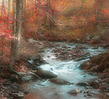 Autumn Splendid by Donna Sherwood