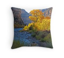 Glenwood Canyon Throw Pillow