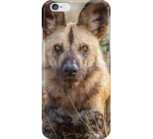 Wild Face of a Dog iPhone Case/Skin
