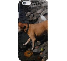 down at the river iPhone Case/Skin