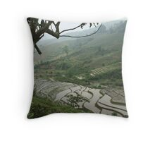 Mist Over Rice Terraces Throw Pillow