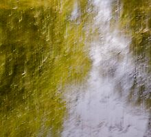 River of Dreams I by Lisa Wilson