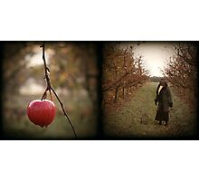 The Early Bird Diptich Photographic Print