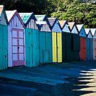 Fancy a shed? by Lisa Wilson