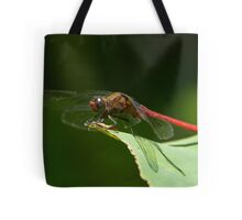 red dragonfly 2 Tote Bag