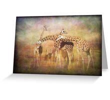 A Tangle of Giraffe Greeting Card