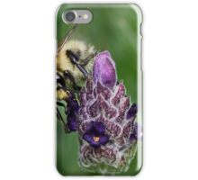 Bee & Lavender iPhone Case/Skin