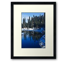 Cool Blue Shadows - Riverbank Winter Forest Framed Print
