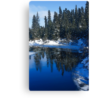 Cool Blue Shadows - Riverbank Winter Forest Canvas Print