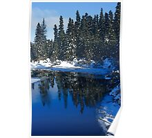 Cool Blue Shadows - Riverbank Winter Forest Poster