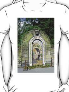 Main Well Dressing, Rowsley 2011 T-Shirt
