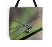 Dragonfly headon Tote Bag
