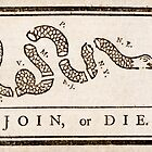 Benjamin Franklin's Join, or Die cartoon by Adam Asar