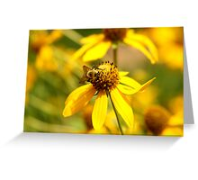 Yellow On Yellow Greeting Card