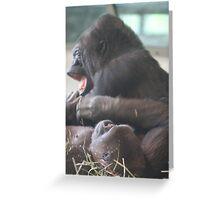Playtime- Lowland Gorillas, Woodland Park Zoo Greeting Card