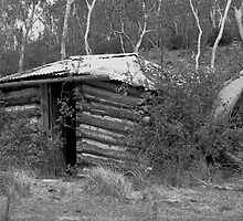 The Old Mud Homestead by C J Lewis