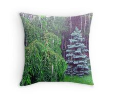 Downpour Throw Pillow